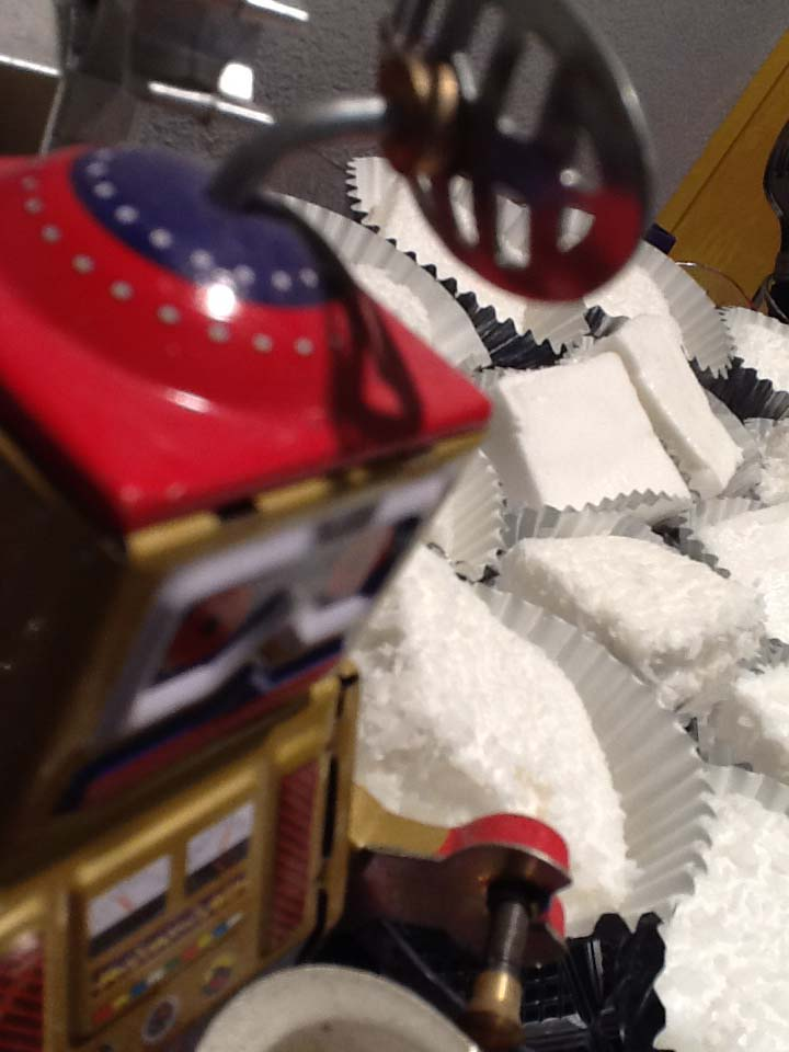 רובוט ומרשמלו